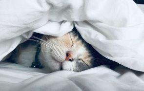 5 astuces pour mieux dormir