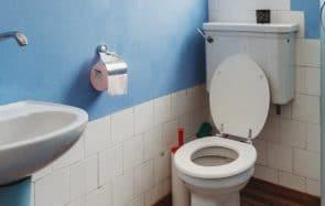 Arrêter le papier toilette, une idée pas si folle