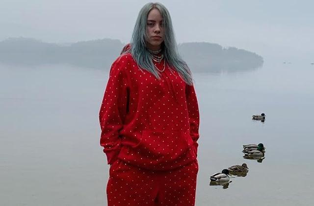 f8b4a76860aad La triste raison pour laquelle Billie Eilish porte des vêtements larges