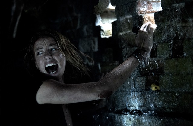 Crawl, le film qui te fera nager dans l'horreur cet été