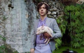 Harry Styles range ses vêtements dans un congélateur à haute sécurité