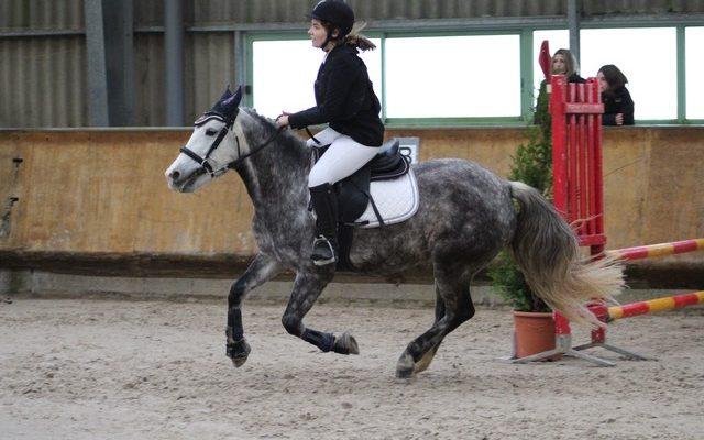 lecons-equitation-640x400.jpeg