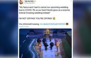 Un couple organise son mariage dans Animal Crossing pendant le confinement