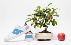 Ces sneakers véganes en cuir de pomme sont 100% made in Europe