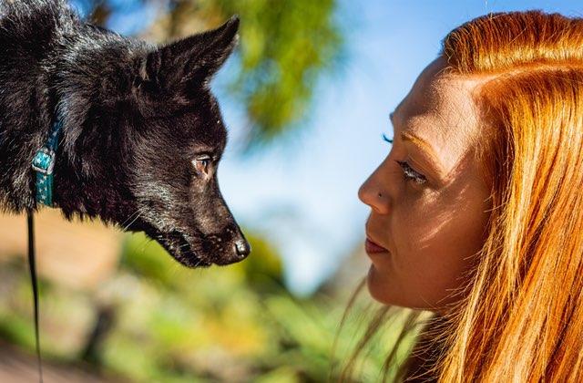 Comment j'ai renoué avec un animal après la mort de mon chat